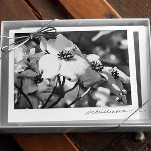 Fine Art Photography-Dogwood Flowers Note Cards